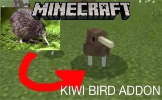 Cute Kiwi Birds – new animal Mod 1.16.1/1.15.2