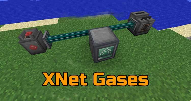 XNet Gases