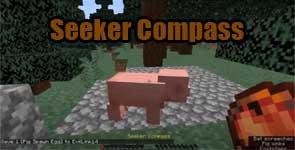 Seeker Compass Mod 1.16.1/1.15.2