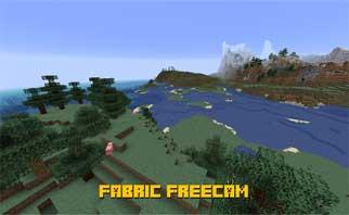 Fabric Freecam Mod 1.15.2