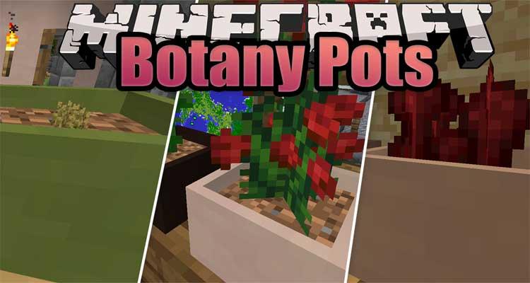 Botany Pots