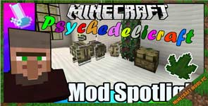 Drugs and Psychedelics Mod 1.12.2