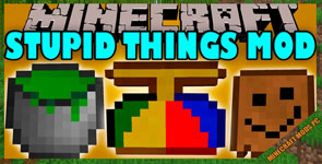 Stupid Things Mod 1.12.2/1.11.2/1.10.2