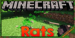 Rats Mod 1.16.5/1.15.2/1.12.2