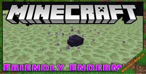 FriendlyEndermite Mod 1.16.5/1.15.2/1.12.2