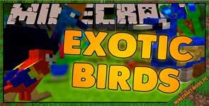 Exotic Birds Mod 1.16.5/1.15.2/1.12.2