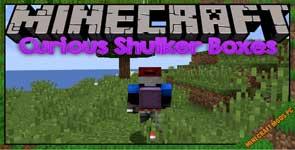 Curious Shulker Boxes Mod 1.16.5/1.15.2/1.14.4